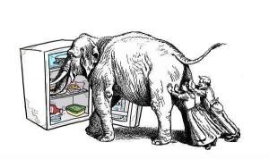 Как засунуть слона в холодильник