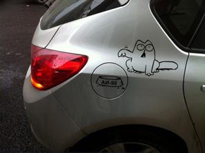 simons-cat
